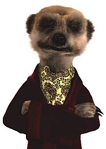 aaa-meerkat-thumb-216x320.png