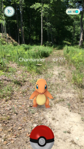 Pokemon Go Footage