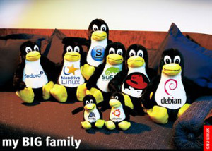 poster_linux_big_family11