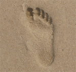 Footprint