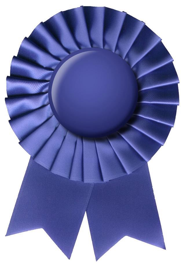 blue-ribbon-1148628-639x915
