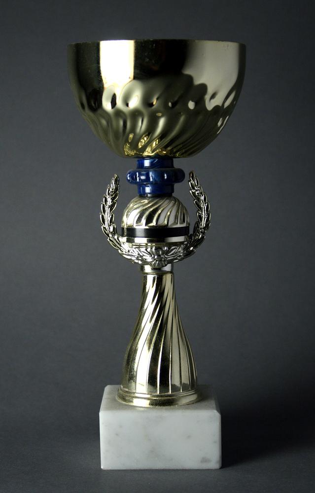trophy-1311027-639x1000