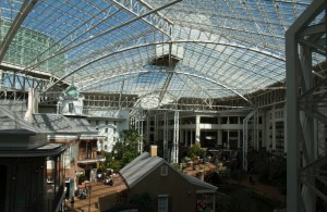 The view from my room at Gaylord Opryland Hotel in Nashville.