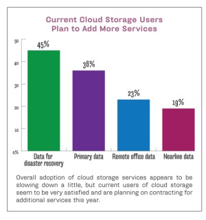 Cloud storage users plan to add more services