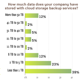 How much data does your firm have stored with cloud storage backup services?