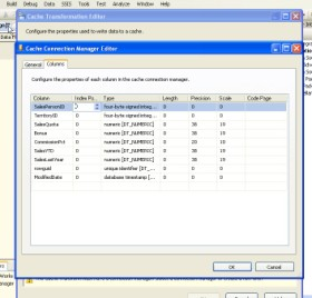 Configuring metadata in SSIS 2008 to store in cache