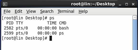 Using ps to show your own processes on a Linux server.
