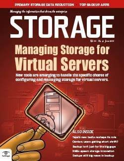 Server virtualization strategies for storage managers