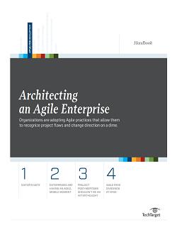 Architecting_an_Agile_Enterprise_hb_final.PNG