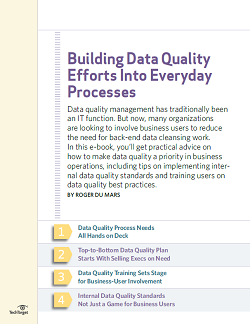 Building_Data_Quality_Efforts_into_Everyday_Processes_ebook_final.PNG