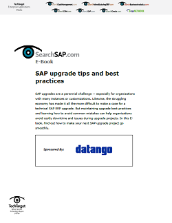Datango_sSAP_SO31964_EBook_1028.PNG