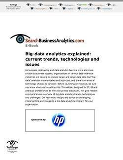 HP_BusAnalytics_IO101666_E-book_111111-1.jpg