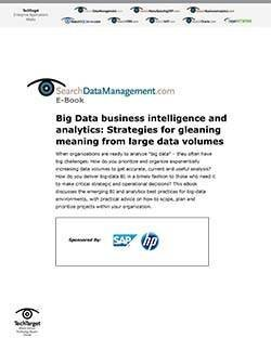 SAP_sDataManagement_SO35267_E-Book_090111-1.jpg