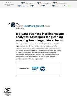 SAP_sDataManagement_SO35267_E-Book_090111-1.jpg