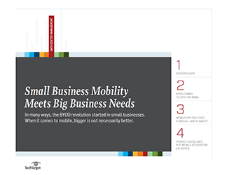 Small_business_mobility_meets_big_business_needs_HB.PNG