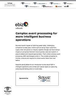 Sybase_eBizQ_SO034463_E-Book_060911-1.jpg
