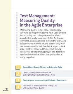 Test Management_Measuring Quality in the Agile Enterprise_final-1.jpg