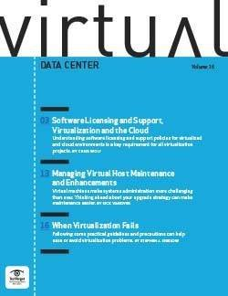 Software licensing and support, virtualization and the cloud
