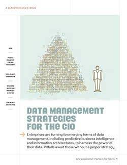 sCIO_Data Management Strategies_v2-1.jpg