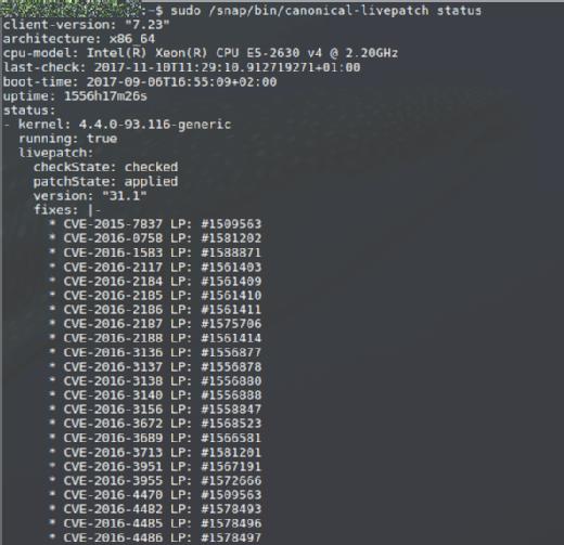 Canonical Livepatch Service ist auf einem Ubuntu Server 16.04 installiert und erledigt still seinen Job.
