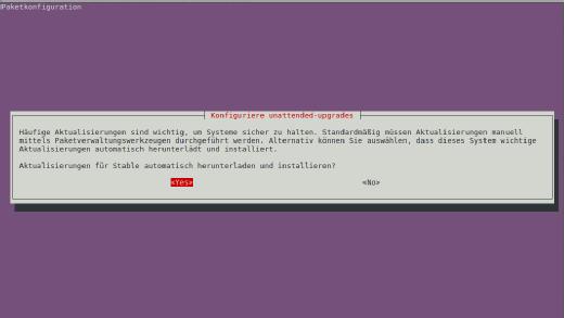 Hier weisen Sie das System an, die unbeaufsichtigten Updates zu aktivieren.
