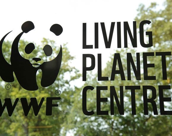 Forget devices, we still need signal, says WWF IT director