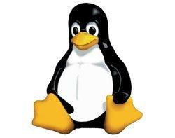41613_Linux.jpg