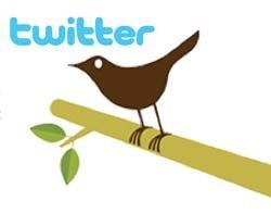 42493_Twitter-bird-logo.jpg