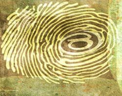 45395_ID-digital-fingerprint-by-Hannah-Gal.jpg