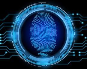 Biometric-security-fotolia290px.jpg