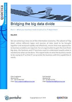 Bridging the big data divide-1_252.jpg