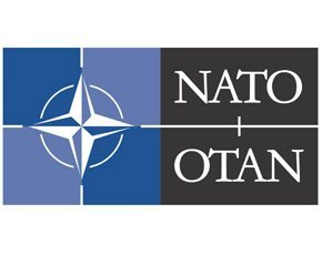 Nato set to clarify stance on cyber attack