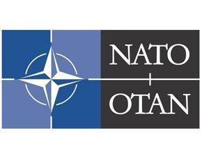 Nato-290x230.jpg