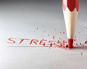 Stress levels on the rise for IT workers