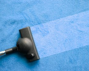 cleaner-290x230-istockp298.jpg