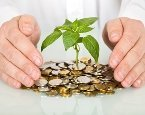Money-tree-thinkstock.jpg