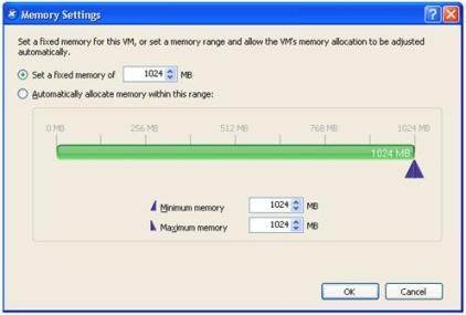Memory management with Citrix XenServer