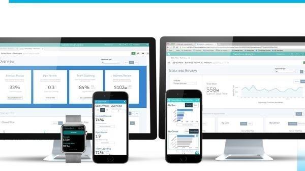 Salesforce Analytics Cloud data.