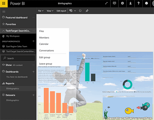 The Power BI web portal.