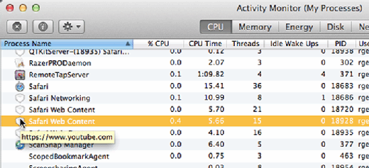 Hover over Safari Web Content to see which site is hogging resources.