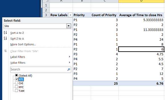 Figure 4: Filtering an Excel pivot table