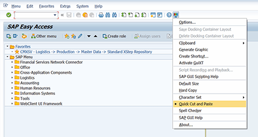 'Quick Cut and Paste' option in SAP ECC.