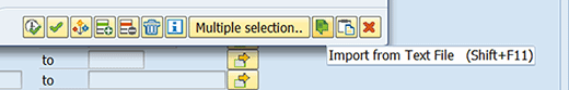 Graphic highlighting the 'Import from Text File' icon in SAP.