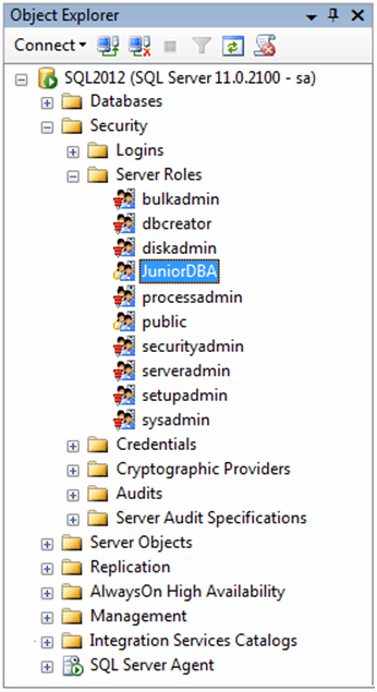 Figure 6: The new server role under the Server Roles folder.