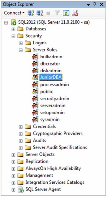 Figure 6: The new server role under the Server Roles folder.
