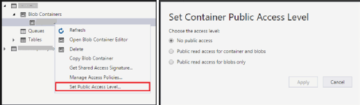 Blob container public access level