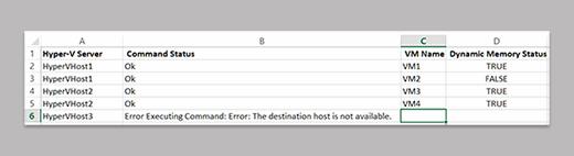 VM dynamic memory status