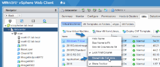 VMs tab in the vSphere Web Client