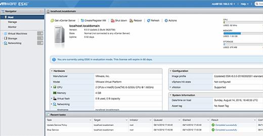 VMware ESXi Client host.
