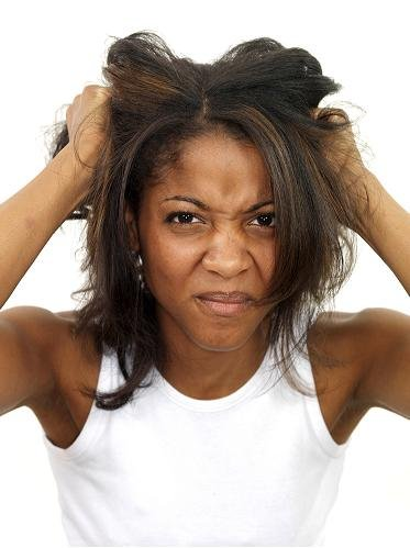 18083-Bad-Hair-Day-Martin-Lee-Rex-Featur